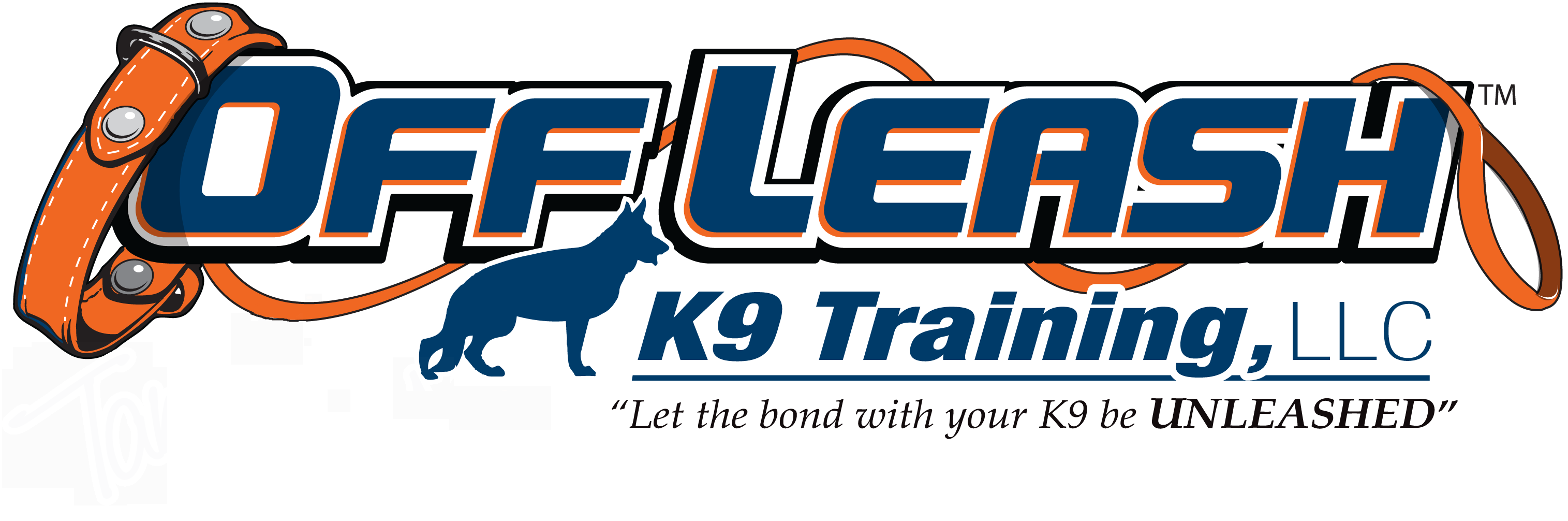 Springfield Offleash K9 Dog Training